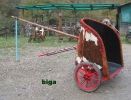 biga-4